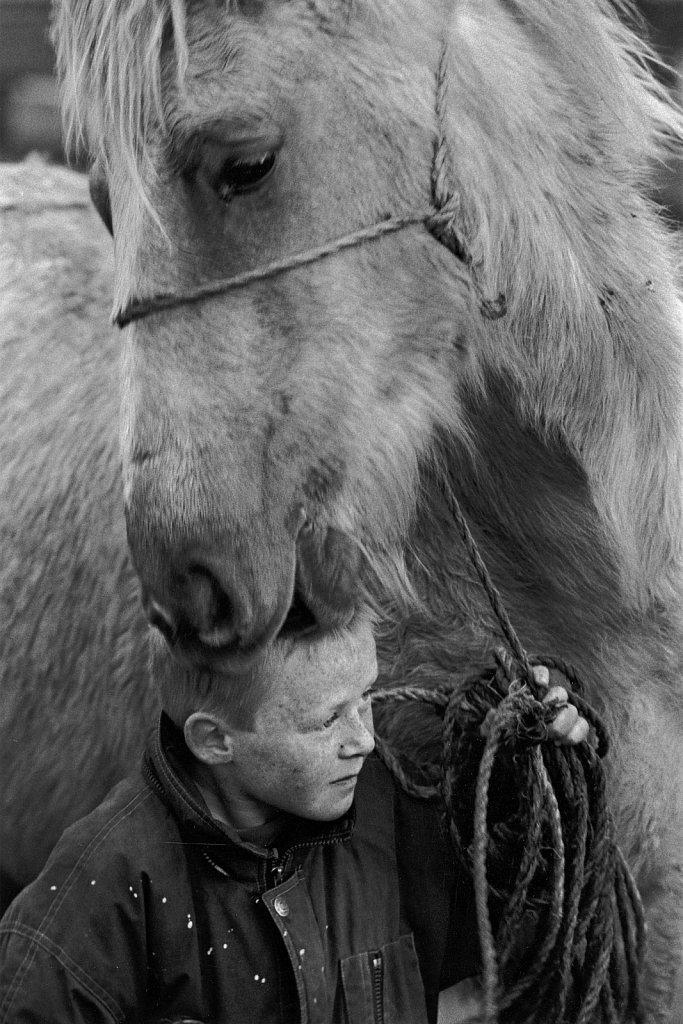 Ponykids